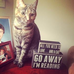 We agree on all counts Lily!!  Love, cats, and leave us alone while we're reading!!