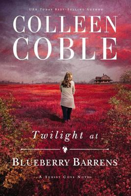 twilight-at-blueberry-barrens